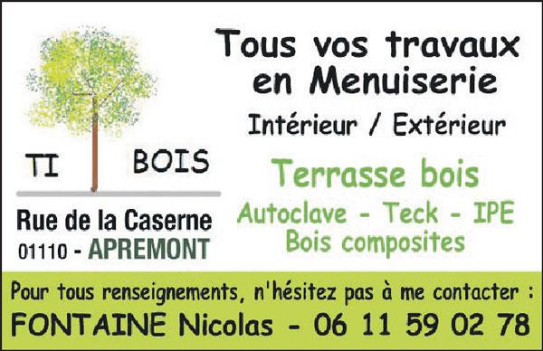 menuiserie-ti-bois-terrasse-bois-apremont