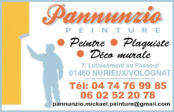 peinture-plaquiste-pannunzio-mickael-01460