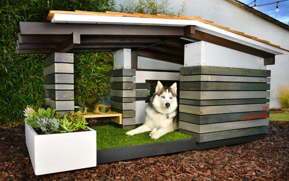 Dog_House-niche-pour-chien-jardin