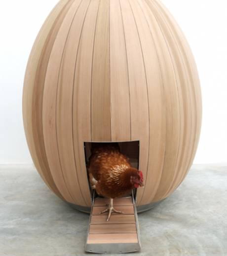 poulailler-design-poule-habitation